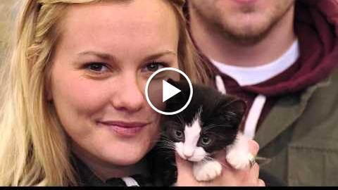 Petsmart ®  Adopting Work-weeks celerity vigilant | Pet resemble